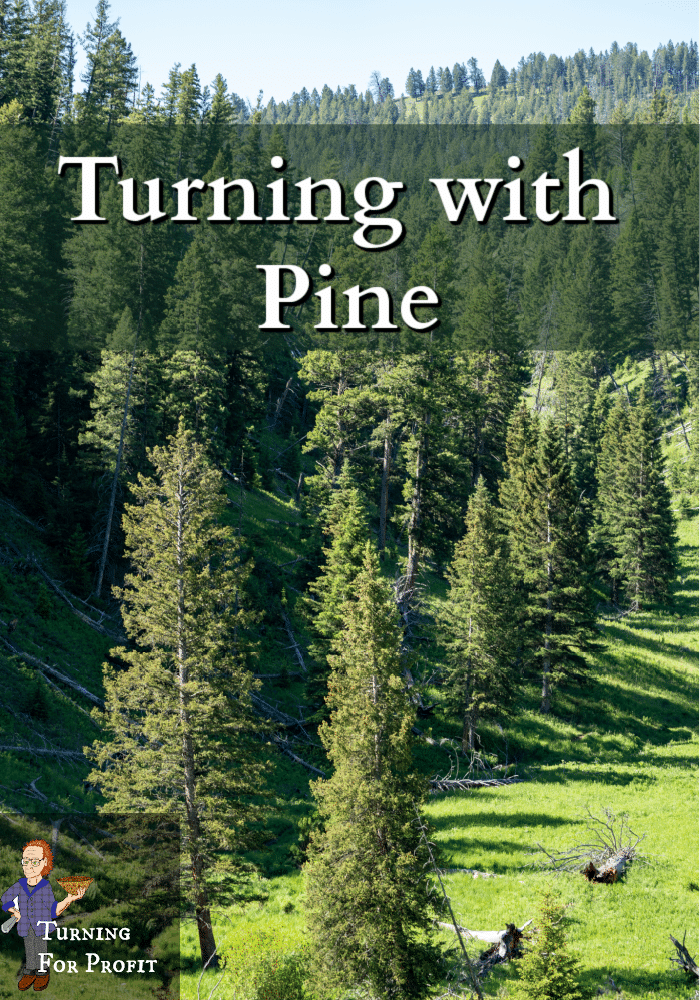 lodgepole pine trees in a valley
