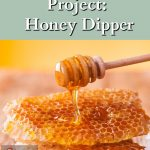 Honeycombs, and honey on a honey dipper